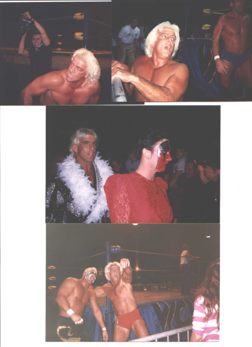 Ric Flair in Action